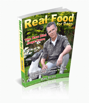 Real Food for Dogs book by Dan Scott