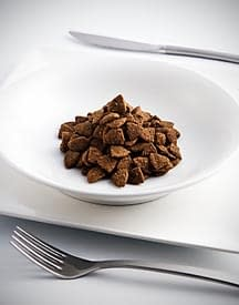 A bowl of dog kibble on the table to eat