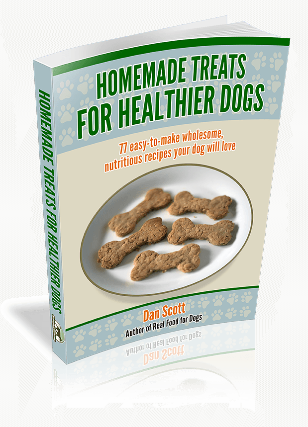 Homemade Treats for Healthier Dogs by Dan Scott