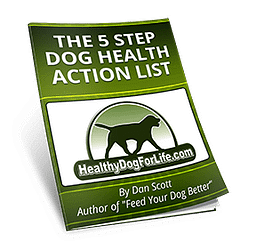 The 5 Step Dog Health Action List