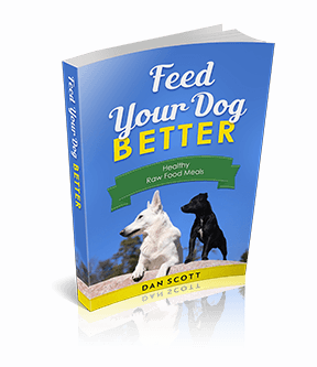 Feed Your Dog Better Raw Food Diet