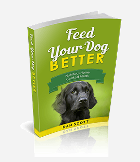 Feed Your Dog Better Home Cooked Food Diet